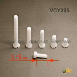 M2,5x5 : Vis plastique tête ronde fendue diam. M2,5 longueur L:5 mm - Ajile