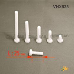 M5 x 25 DIN933 : Plastic hex. Bolt for 8 mm wrench: diam. M5  length 25 mm - Ajile