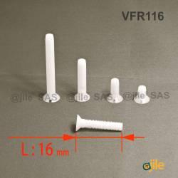 M2 x 16 mm Senkschraube mit Schlitz aus Kunststoff: diam. M2 Länge 16 mm - DIN963 - Ajile 4