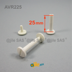Plastic binding screws with...